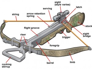 Recurve Crossbow Construction