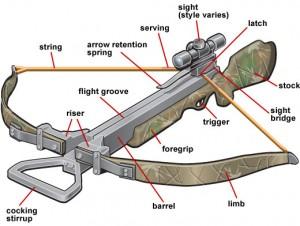 Recurve Crossbow Construction