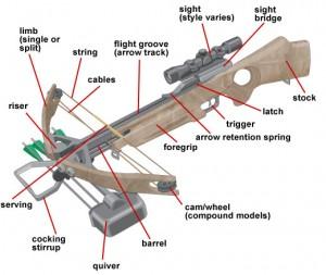 compound crossbow design